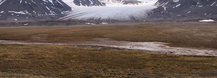 Trond Johnsen bilde av Bjerke med Vestre Brøggerbreen i bakgrunnen DSC03955