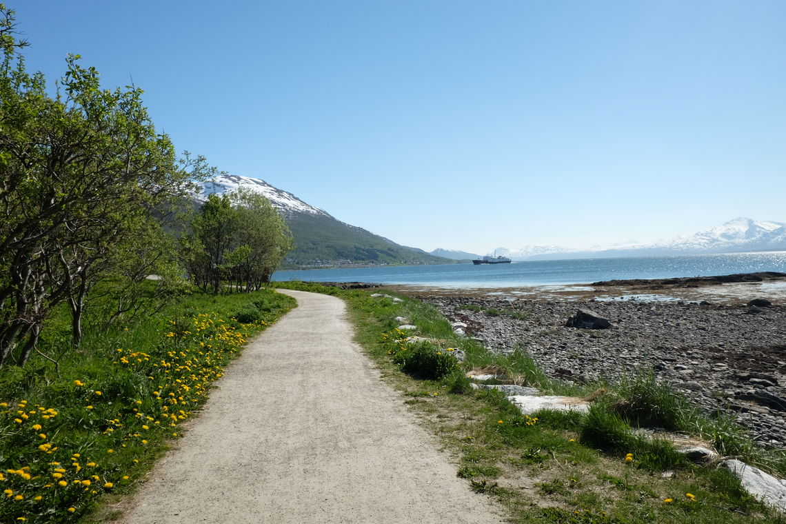 Tilrettelagt turvei rundt Sydspissen på tromsøya. Foto: Maja Sjöskog Kvalvik