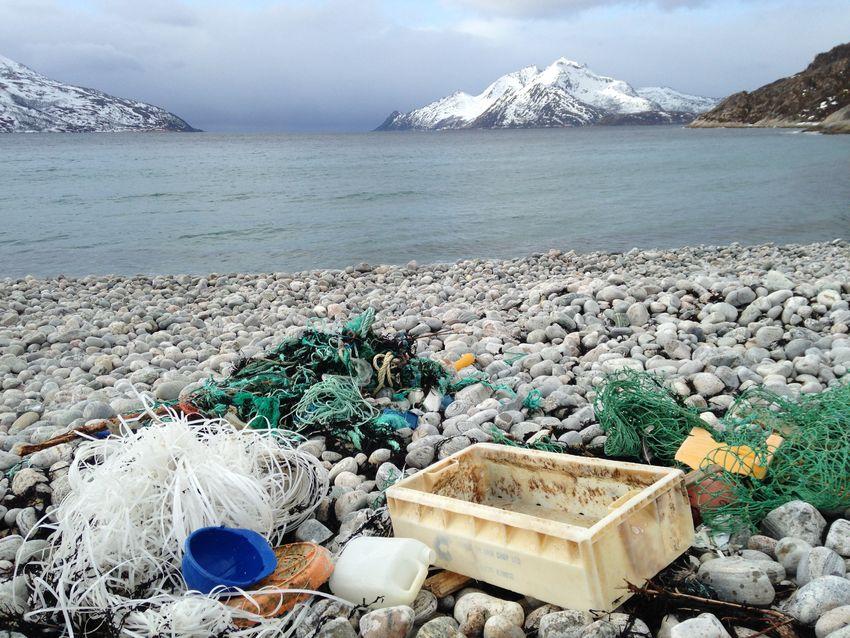 Søppel i Rekvika, Skulsfjorden. Foto Tine Marie Hagelin