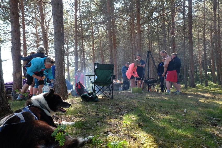 Friluftsfestivalen ved Sandørneset var godt besøkt. Foto: Maja Sjöskog Kvalvik.