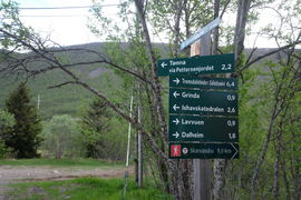 Tromsdalen_juni2017_MajaSjöskogKvalvik(10)