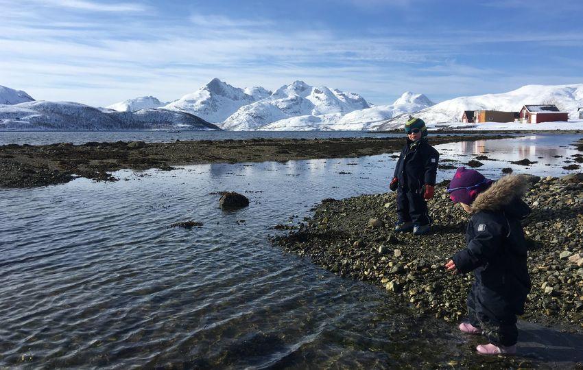 FjæreturiSkulsfjorden_TineMarieVHagelin