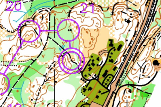 Målet er trukket inn i skogen, et stykke unna samlingsplass. Kart: Halden Skiklubb/Norwegian Spring.