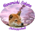 Hanamichi_Sakura_150x132.png