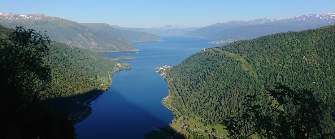 Holmen og Esefjorden sett frå Vindreken