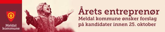 banner_nettside_årets_entreprenør_2018.png