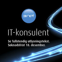 3net_IT-konsulent 404x404pxl.indd