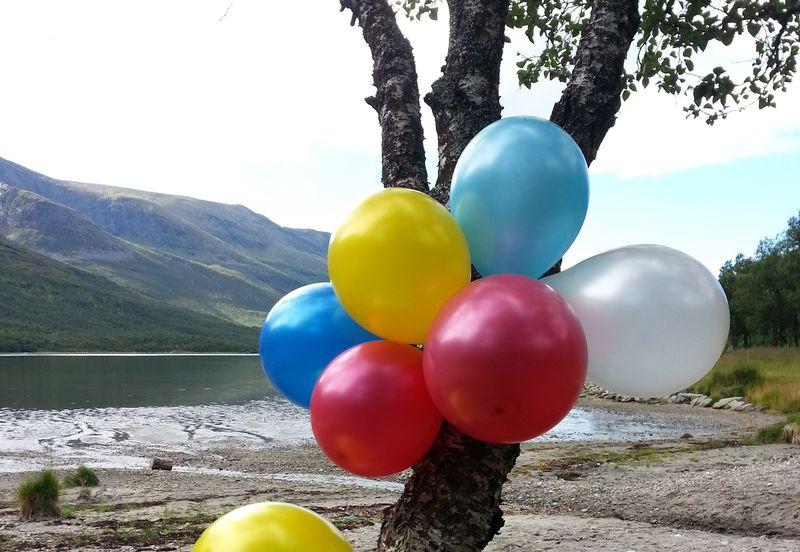 Ballonger i et tre fra Straumen Andørja