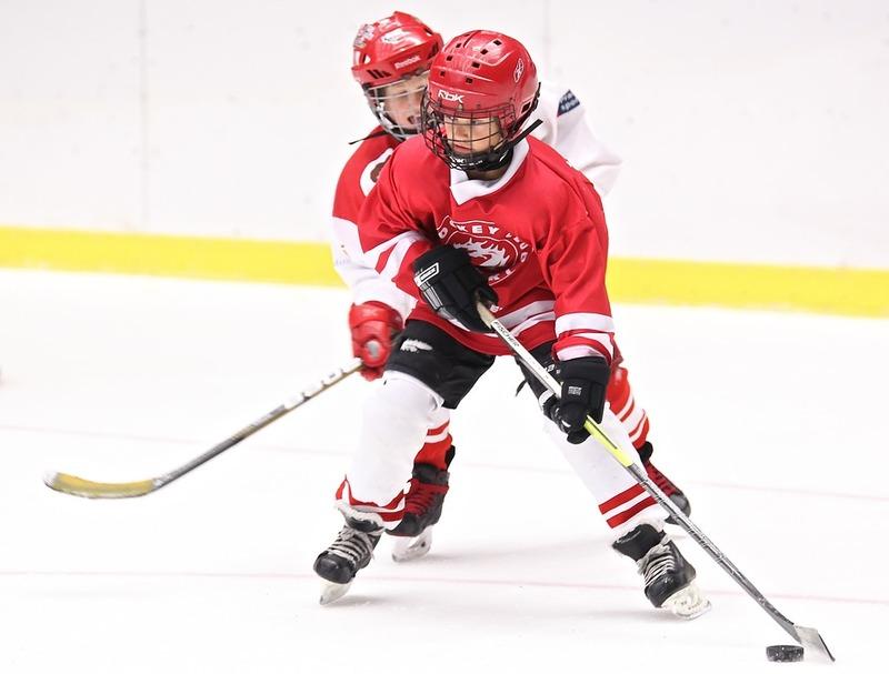 Hockeyspillere