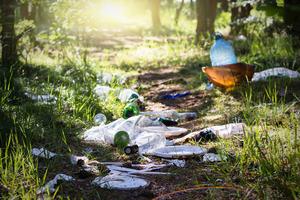 Avfall i naturen