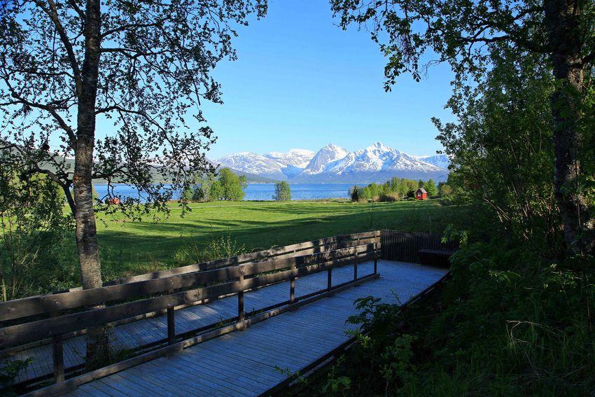 Tennes helleristningsfelt i Balsfjord, tilpasset hjulbrukere. Foto: Tine Marie Valbjørn Hagelin