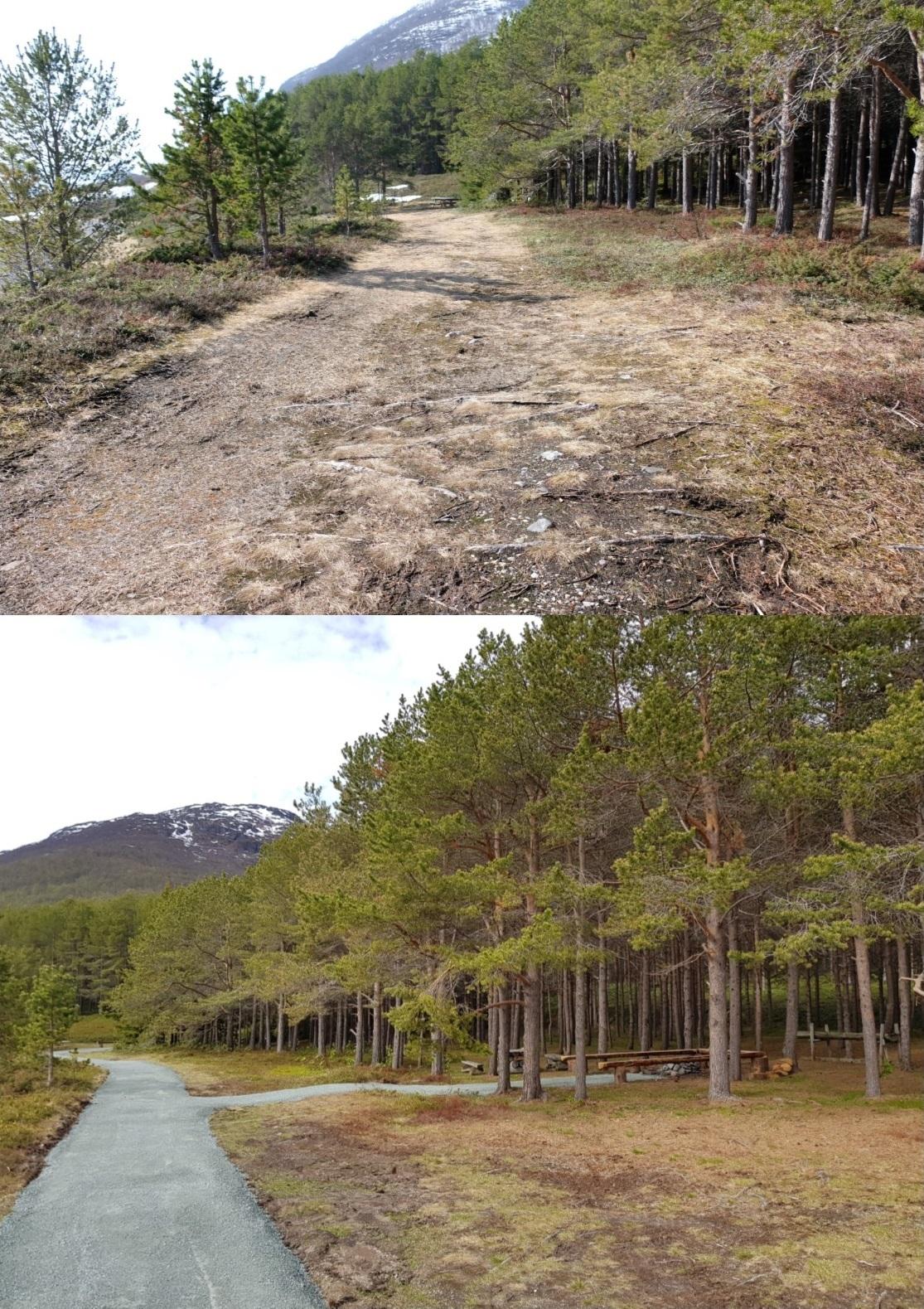 Før og etter turveg