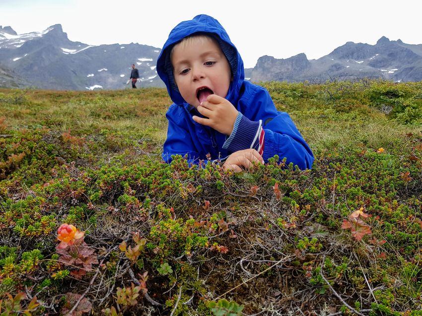 Multer smaker best helt ferske. Foto Maja S. Kvalvik