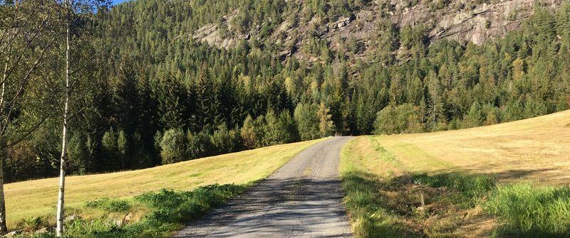 Turveg på Byglandsfjord