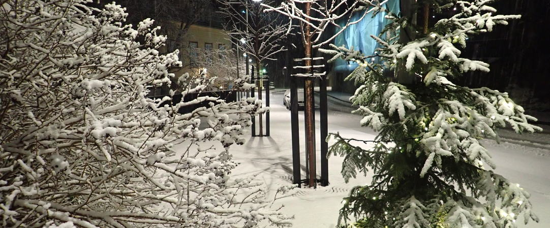 Vinterstemning i Holmen