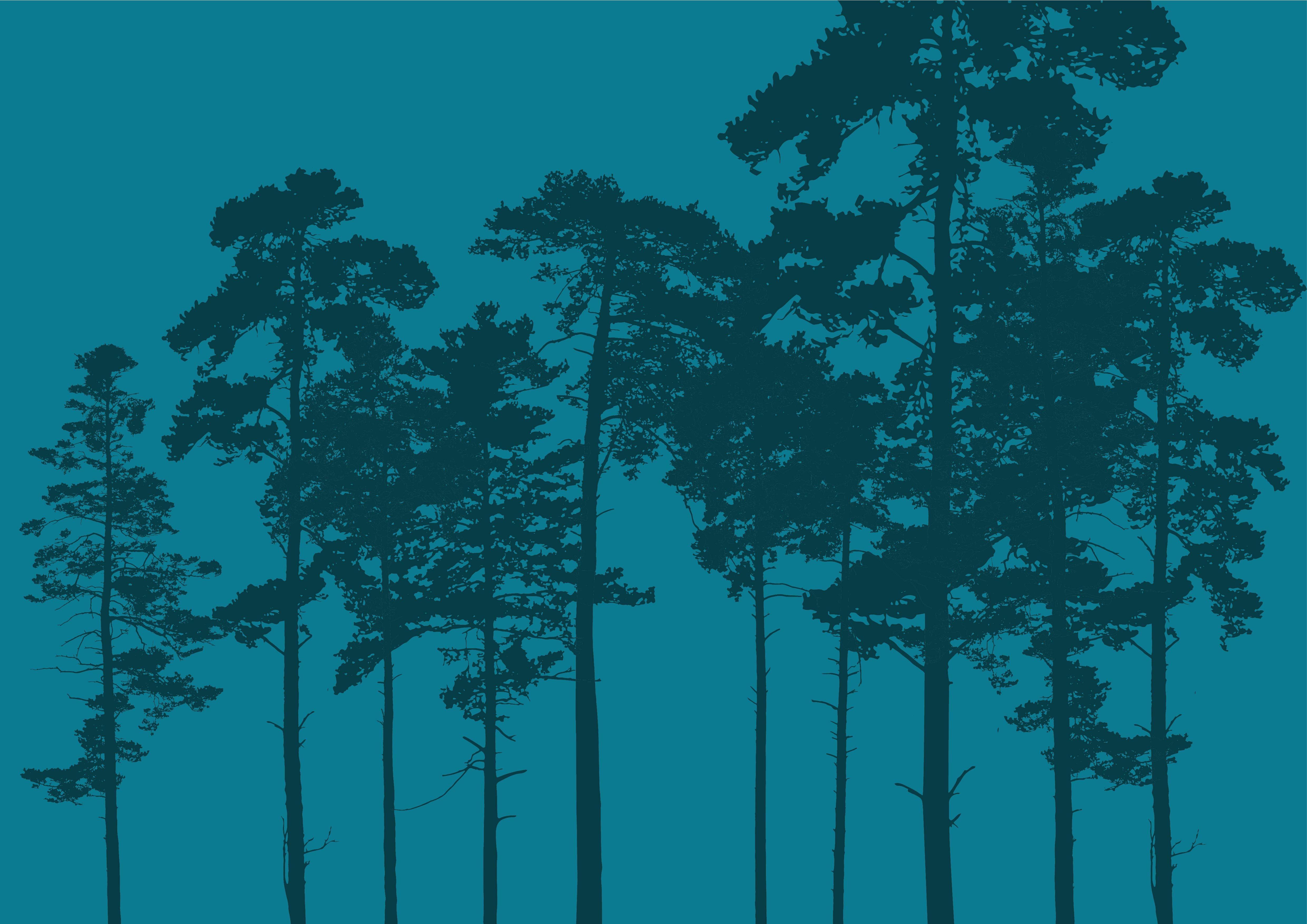 Skogmønster