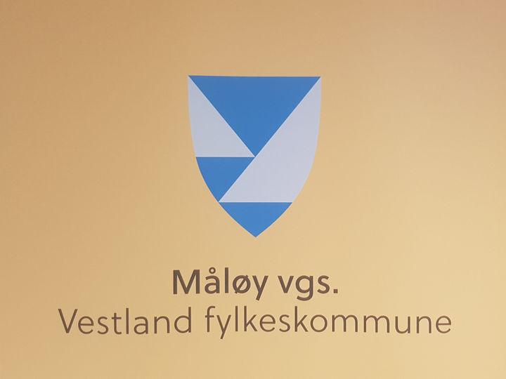 Ny logo MVS 2020