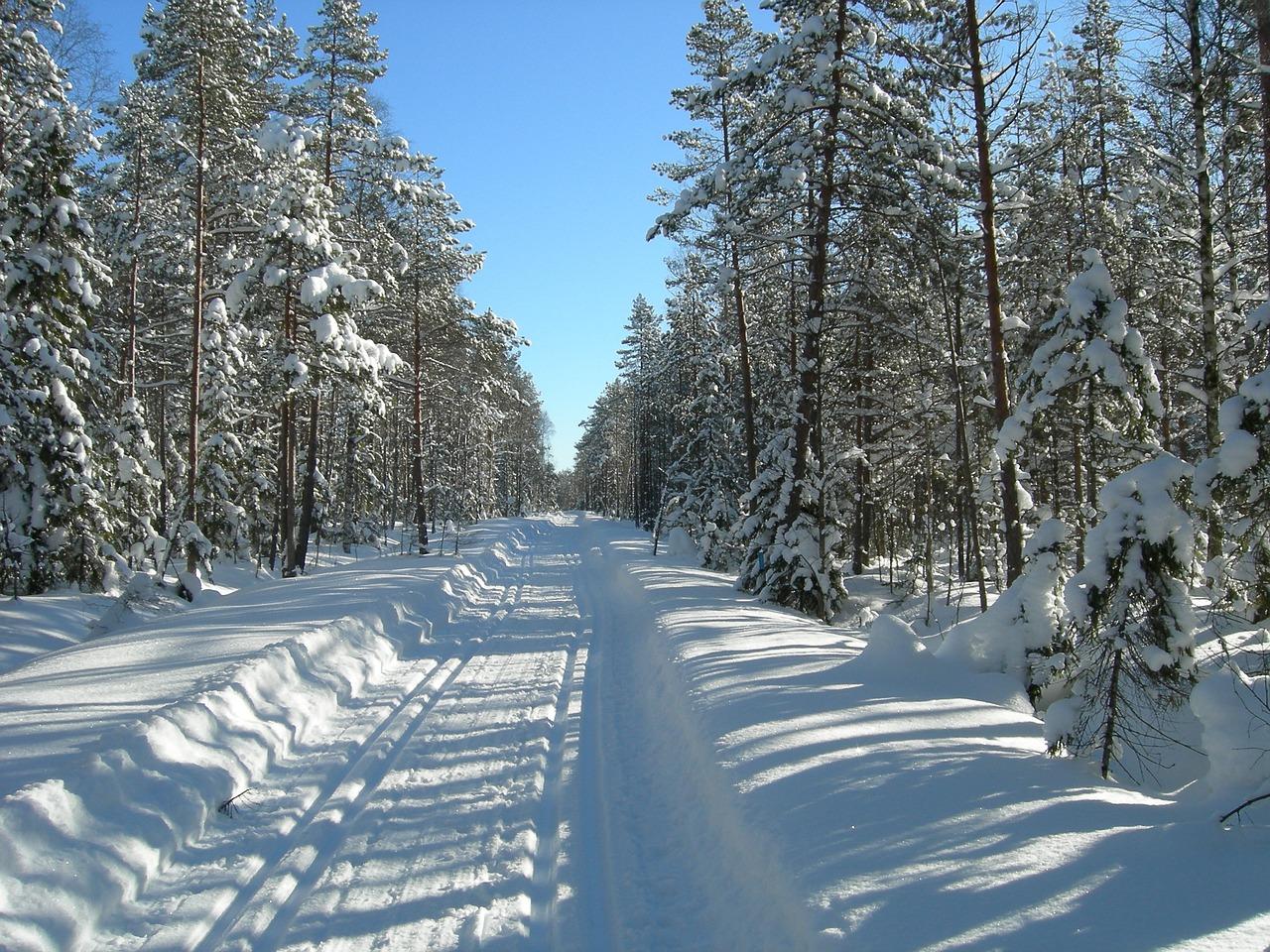 skiløype,snø.jpg