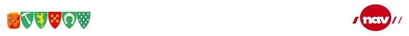 NAV,logo,riktig str..jpg