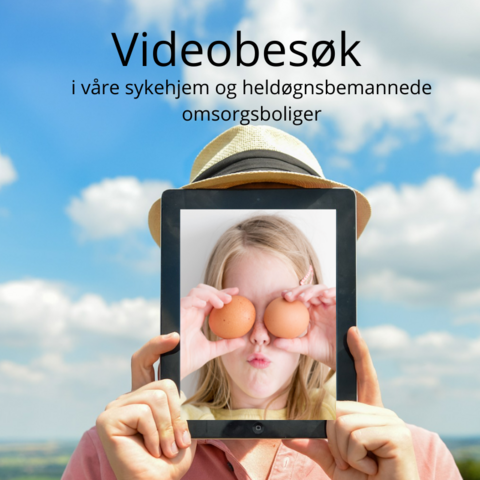 Videobesøk