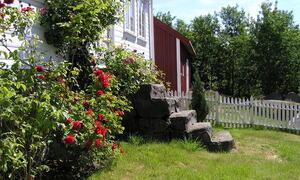 Parti fra Vårøy
