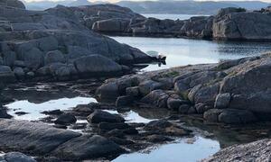 Grunnesund