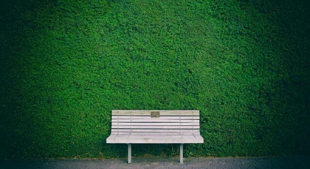 Grønne møteplasser