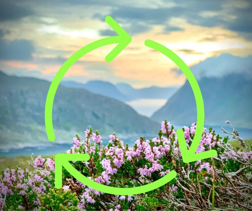 Når du kjeldesorterer avfallet ditt, er du med på å ta vare på ressursane våre