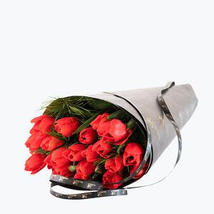 200791_blomster_tulipaner