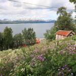 Foto: Solveig Enoksen