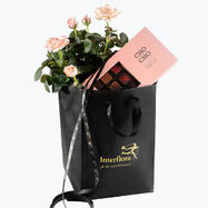 210129_blomster_plante