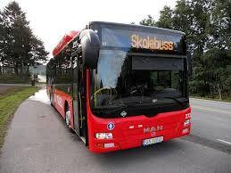 Skolebuss