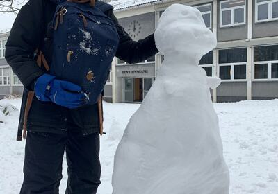 snødino