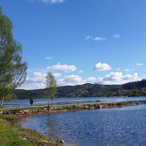 Venneslafjorden