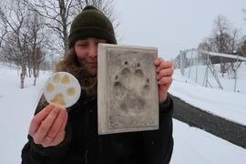 Gina Uthus fra Besøksenter rovdyr viser fram foravtrykk av en husky og en ulv.