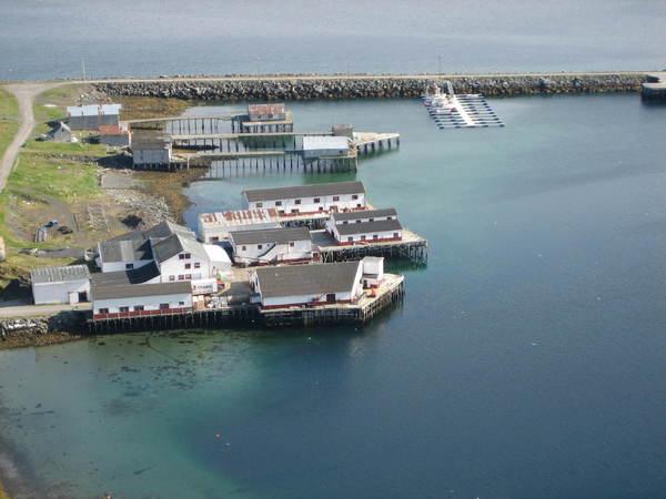 Kongsfjord Havn