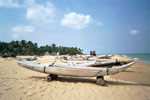 Fiskebåter på land